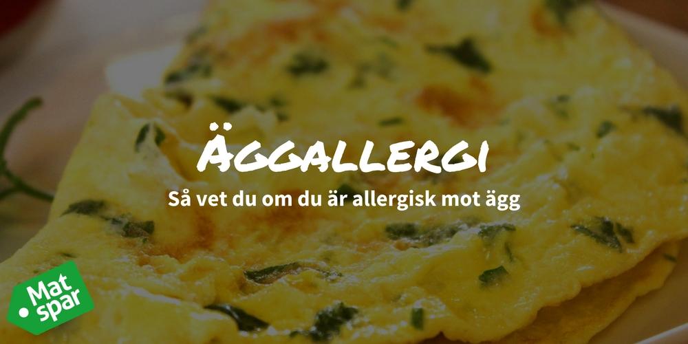 kyckling allergi symptom